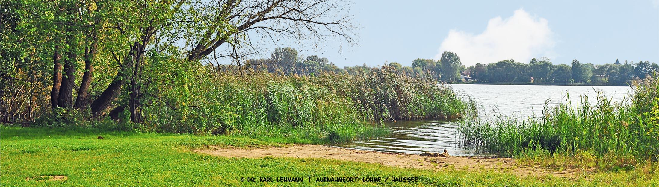 Rundweg Löhmer Haussee
