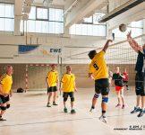 Volleyballer VSG Seefeld