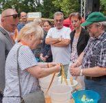 Altstadtfest Werneuchen 2018