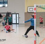Männer Handball-Punktspiel RW WER-Oranienburger HC III